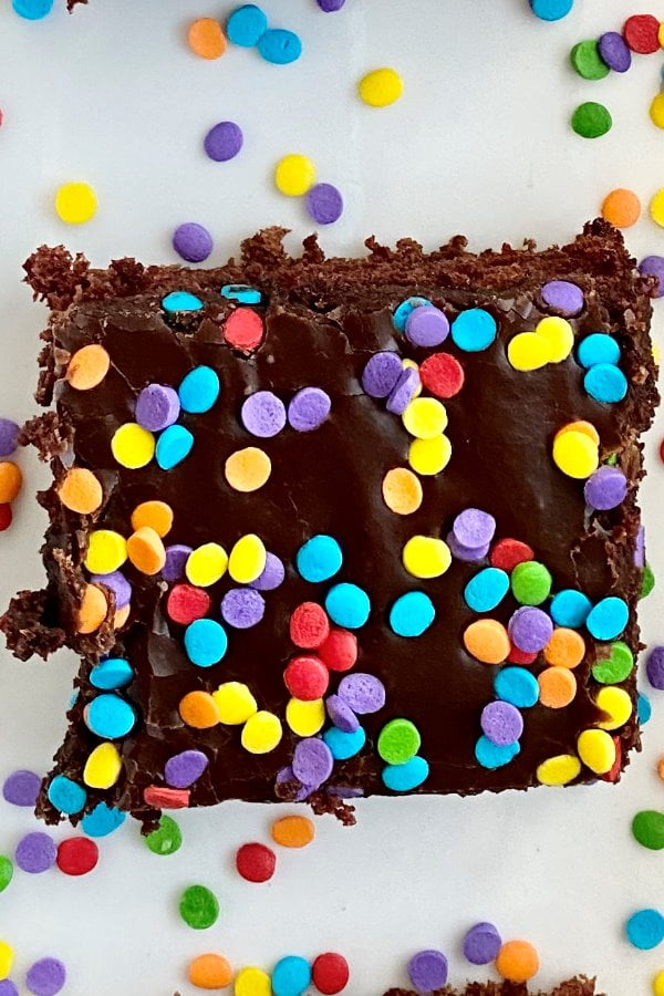 a slice of chocolate cake with rainbow sprinkles