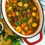Guinness Irish Lamb stew