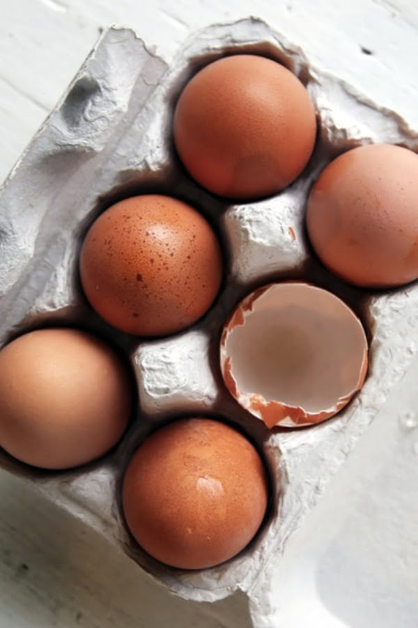 carton with 6 eggs